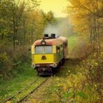 A Trip on The Narrow-Gauge Railway Train